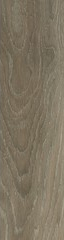 Rainforest Taupe 22x85